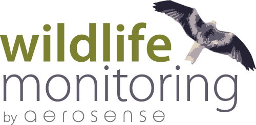 wildlife monitoring by aerosense
